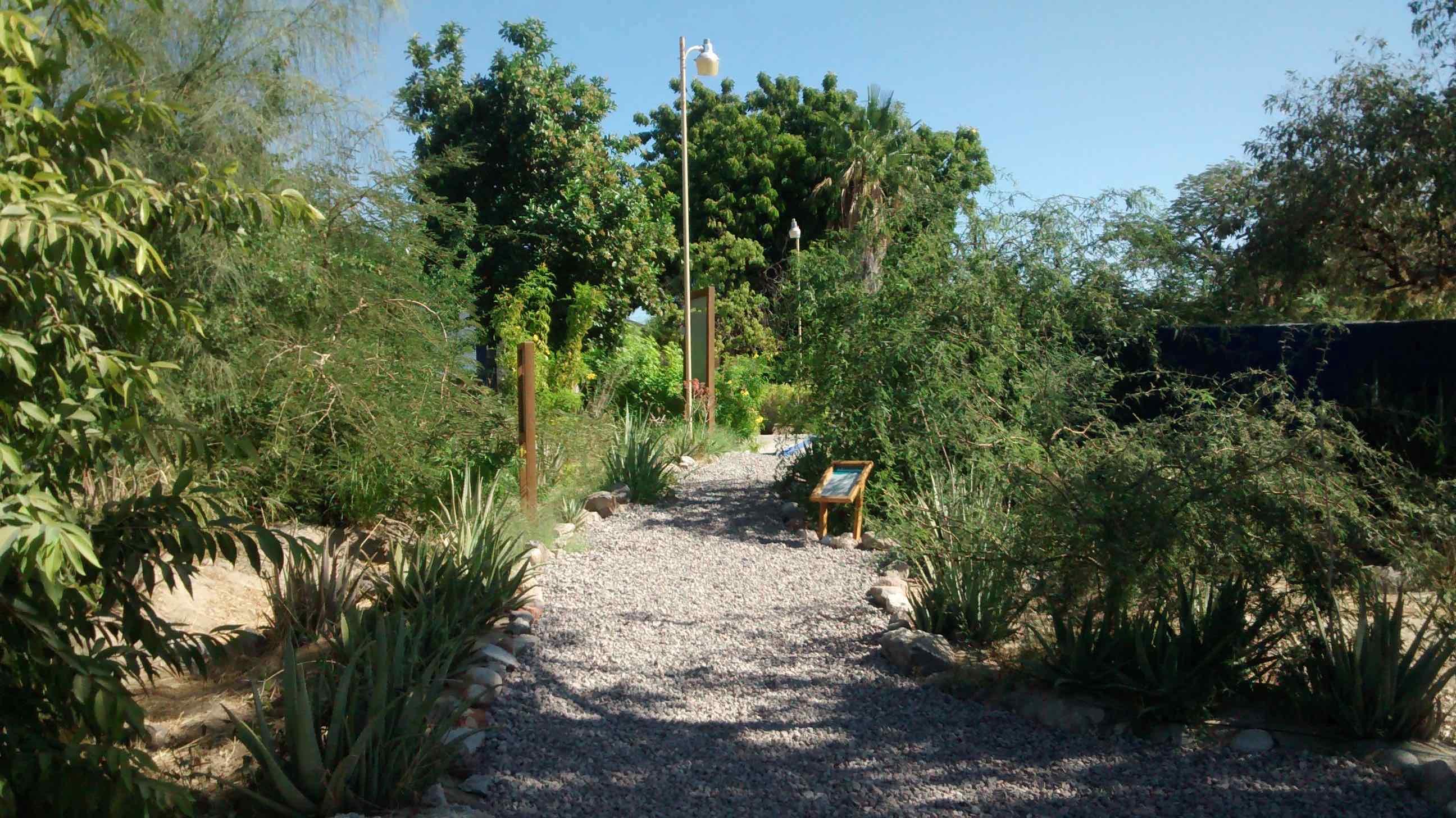 Jardín de cosecha de agua de lluvia
