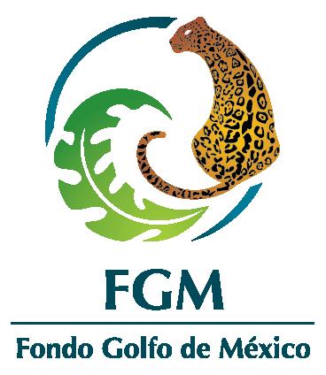 Gulf of Mexico Fund