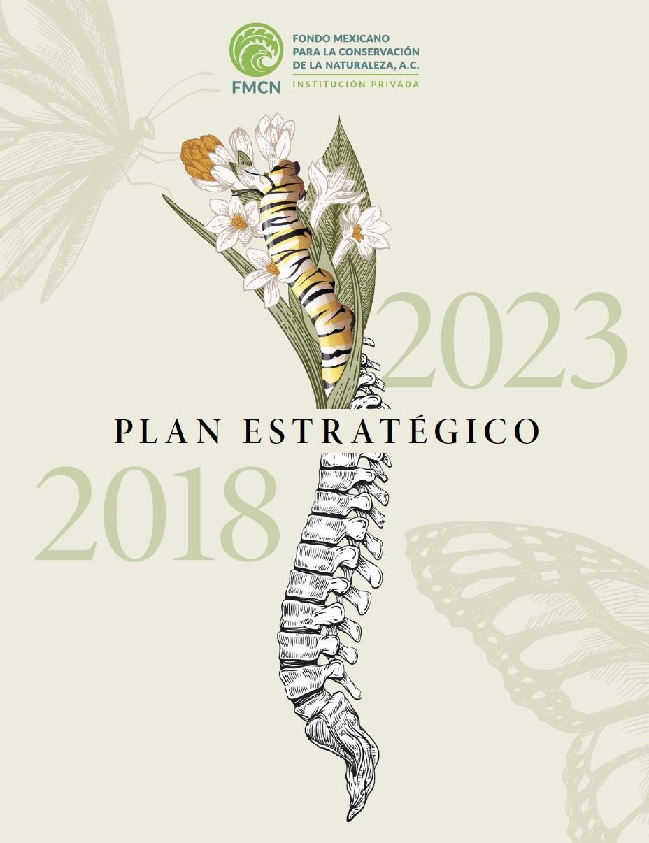 Plan estratégico FMCN